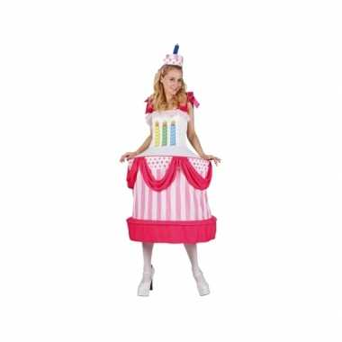 Grote maten taart verkleedkostuum voor dames